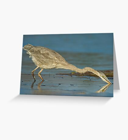 The Heron moved! Greeting Card