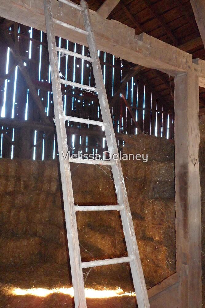 Barn Ladder by Melissa Delaney