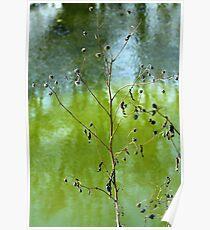 River Brush Poster