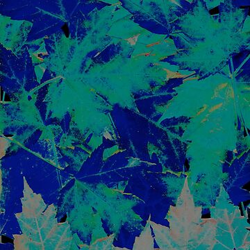 Blue & Green Autumn Leaves by jnasty