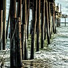 Closed Pier by Robin Black