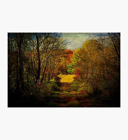 Inspired by Robert Frost Photographic Print