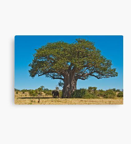 Lonely giant Canvas Print
