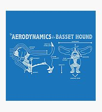 The Aerodynamics of a Basset Hound Photographic Print