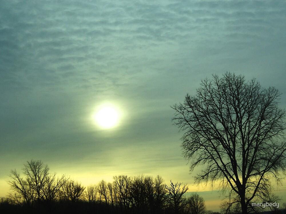 Canadian Sunrise by marybedy