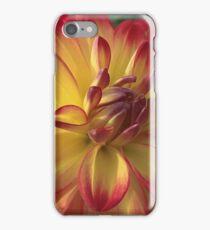Delicious Dahlia iPhone Case/Skin