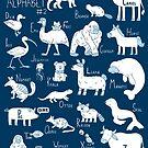 Animal Alphabet #2 by ShakeyIllustra