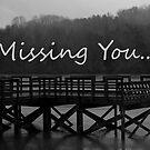 Missing You... by Sam Warner