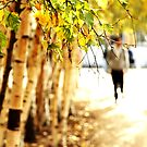 Autumn. by Jamie O'Mara