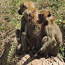 3 Wise men in Africa by maureenclark