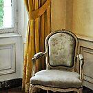 Rococo Revival by Karen E Camilleri