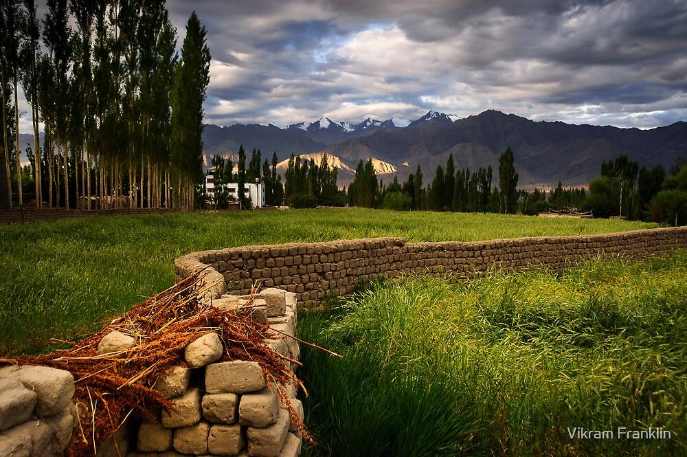 Walls. Who Needs Them. by Vikram Franklin