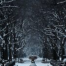 CENTRAL PARK IN THE SNOW by Michael Carter