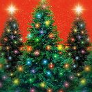 Christmas Trees by Elaine Manley