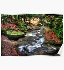 Spring Flow at Old Man's Cave Poster