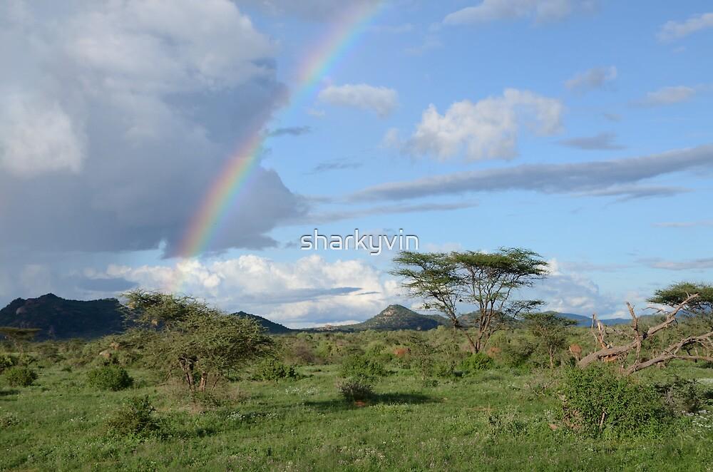 Samburu  landscape 3 by sharkyvin