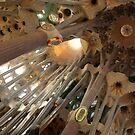 Sagrada Familia by Paulo Rodrigues