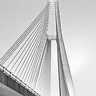 ANZAC Bridge - Glebe NSW by Mark  Lucey