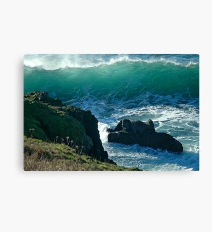 Beach Combers Nightmare Canvas Print