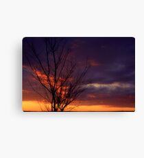 Winter Sunset on the Prairies 1 Canvas Print