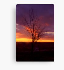 Winter Sunset on the Prairies 2 Canvas Print