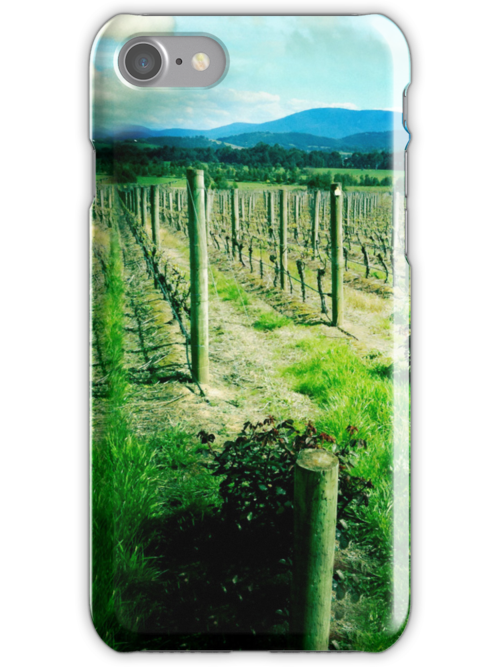 Old Vines iPhone Case by graphicasylum