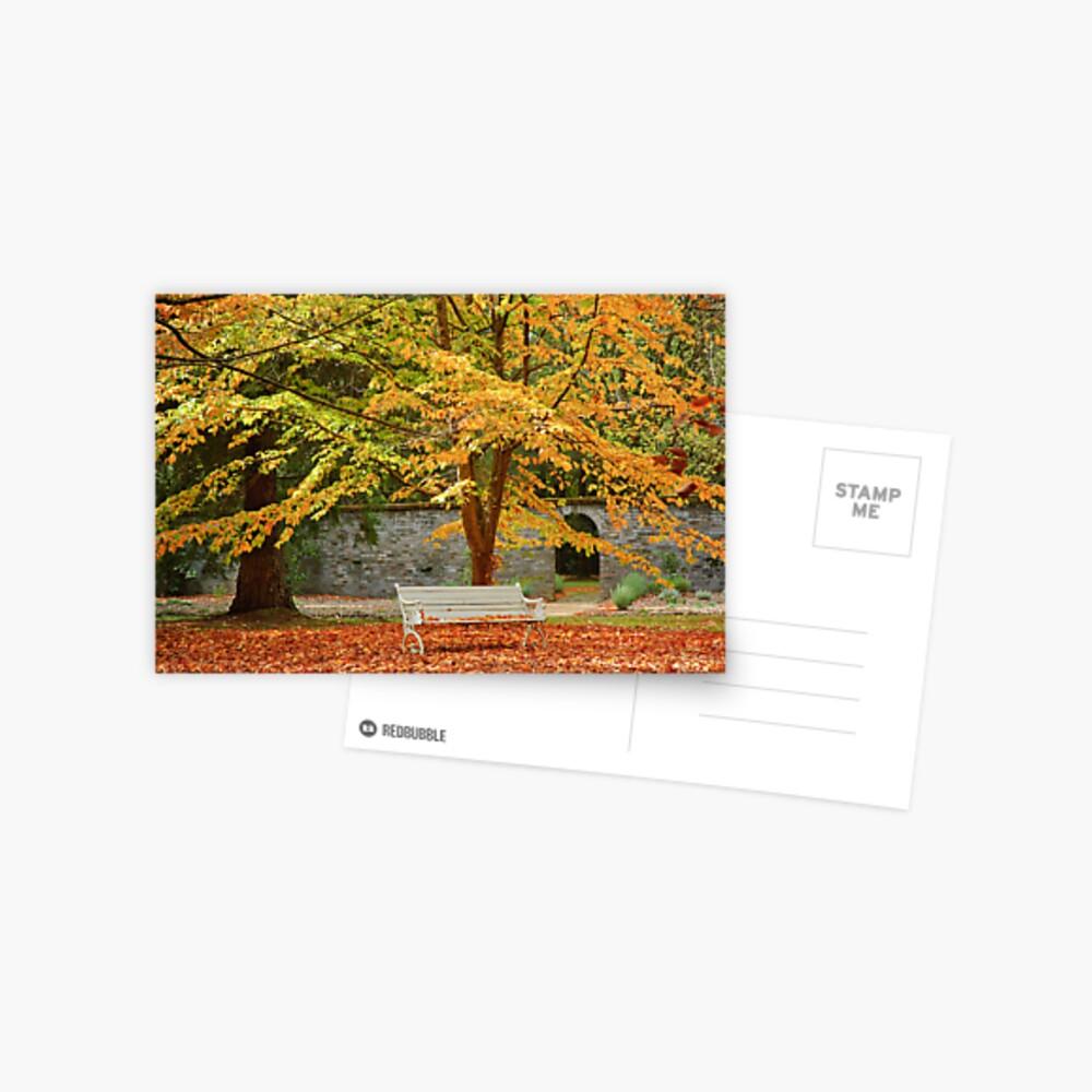 Garden Seat Postcard