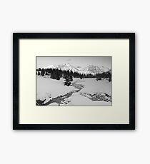 Winter view (b&w) Framed Print