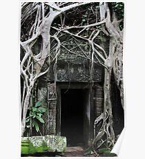 Ta Prohm Temple Door II - Angkor, Cambodia. Poster