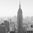 New York City, Empire State Building   B/W   iPhone/iPod von thomasrichter