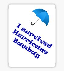 Hurricane Bawbag Sticker