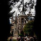 Notre Dame,Paris. by Davide Ferrari