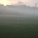 mist in the park by lucycat