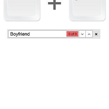 Web Developer Control Find Boyfriend by jroi
