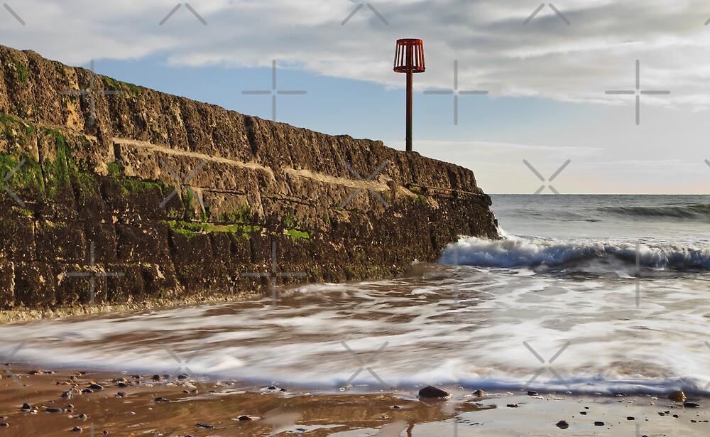 Dawlish Coast by daynov