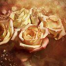 Festive Roses by EbyArts