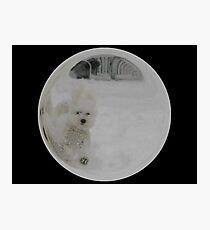 Cindy's Snow Globe's 3 Photographic Print