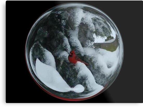 Cindy's Snow Globe's 6 by dge357