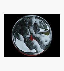 Cindy's Snow Globe's 6 Photographic Print