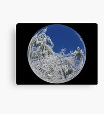 Cindy's Snow Globe's 9 Canvas Print