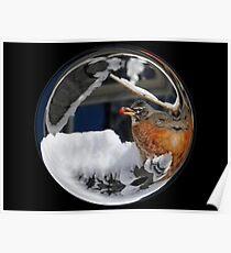 Cindy's Snow Globe's 10 Poster