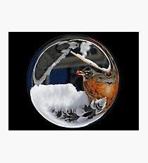 Cindy's Snow Globe's 10 Photographic Print