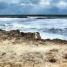Storm Off the Florida Treasure Coast by Noble Upchurch