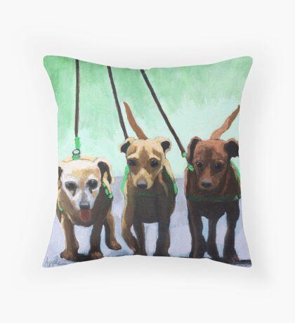 Family of Chihuahuas - animal art Throw Pillow