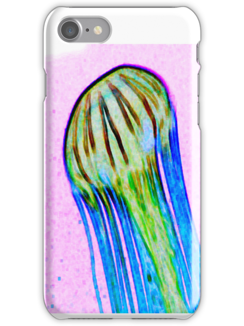 Jellyfish series 3 by andytechie