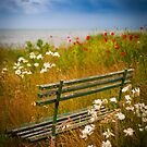 Where we we used to sit... by Inge Johnsson