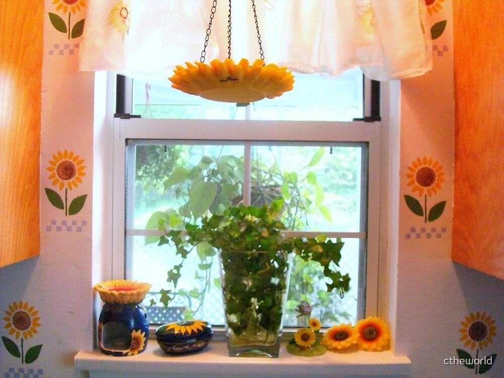 Kitchen windowsill  ^ by ctheworld