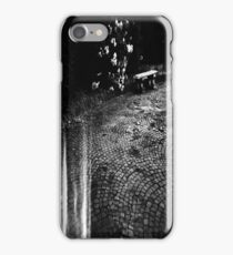 holga iPhone Case/Skin