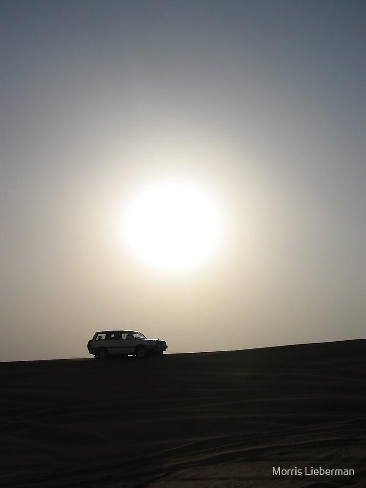 """Desert Sun"", Dubai by Morris Lieberman"