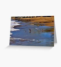 Dogs at play Greeting Card